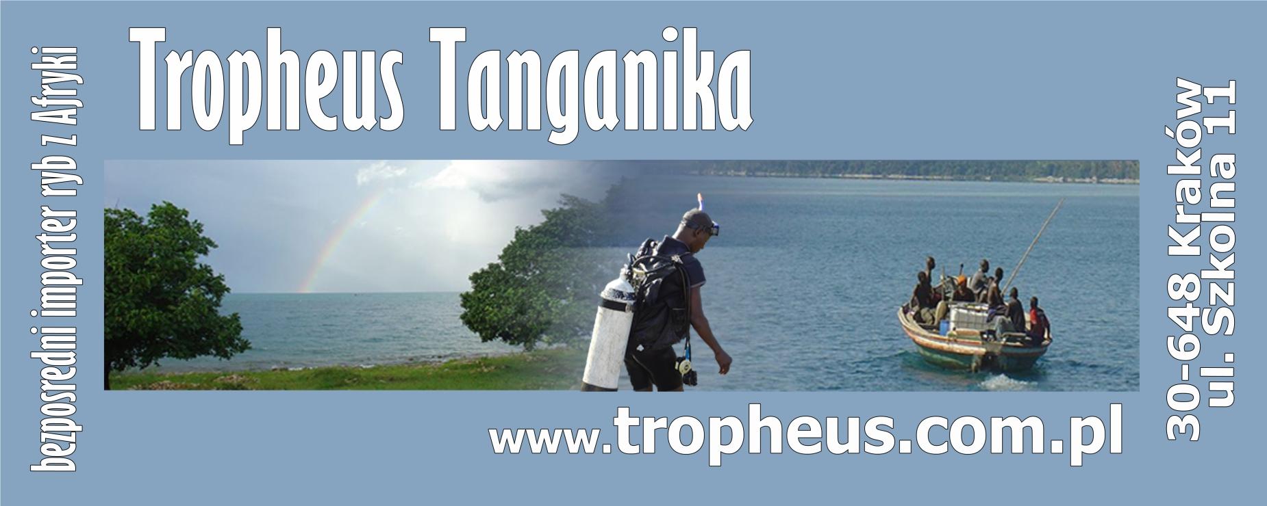 www.tropheus.com.pl