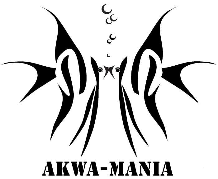 Akwa-mania 2021