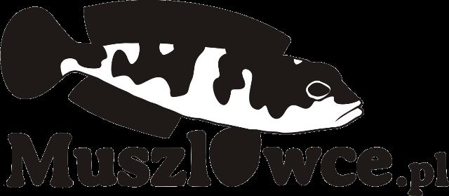 Muszlowce.pl 2021